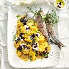 Curry-Kartoffel-Salat mit Matjes
