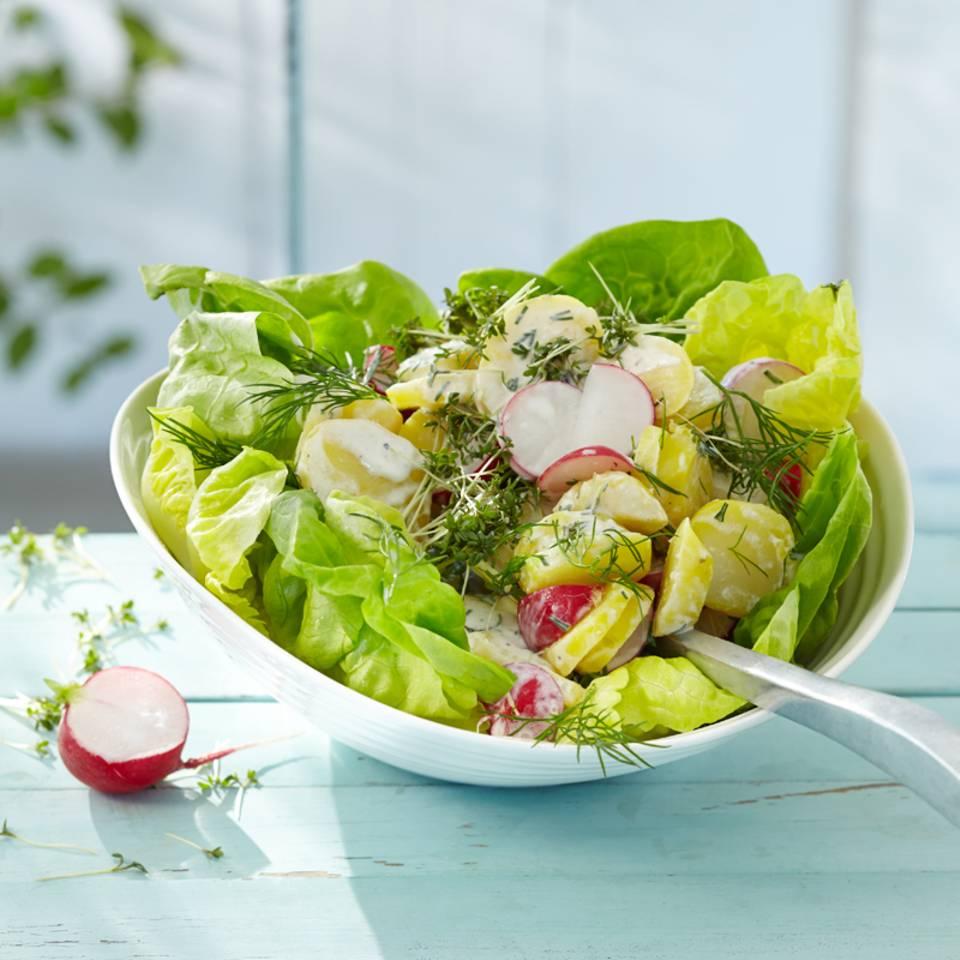 Kartoffelsalat mit Meerrettich Rezept