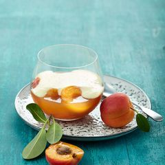 Aprikosen-Götterspeise mit Holunderblüten-Sabayon