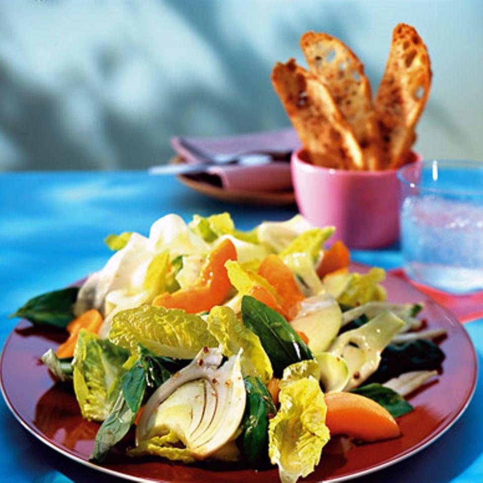 Frühlingssalat mit Aprikosen und Fenchel
