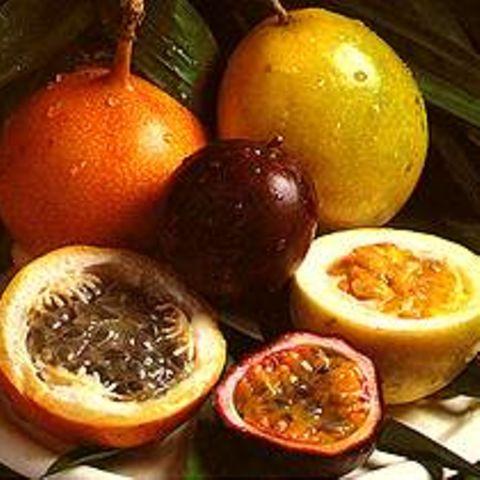 Tamarinden-Enten mit Passionsfruchtsauce