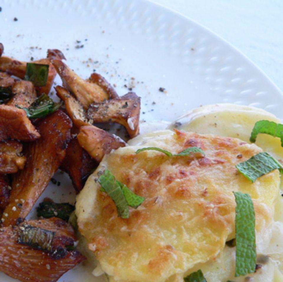 Gebratene Pfifferlinge und Kartoffelgratin mit Salbei und Rosmarin