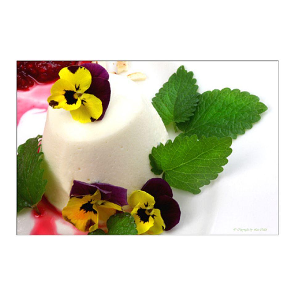 Lizchen's Holunderblüten-Joghurt-Mousse mit essbaren Hornveilchen