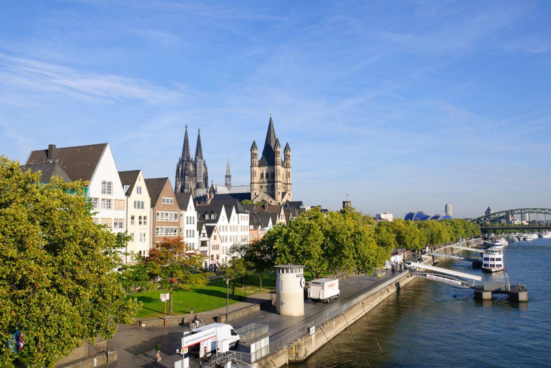 Am Rhein finden sich zahlreiche Weinanbaugebiete.