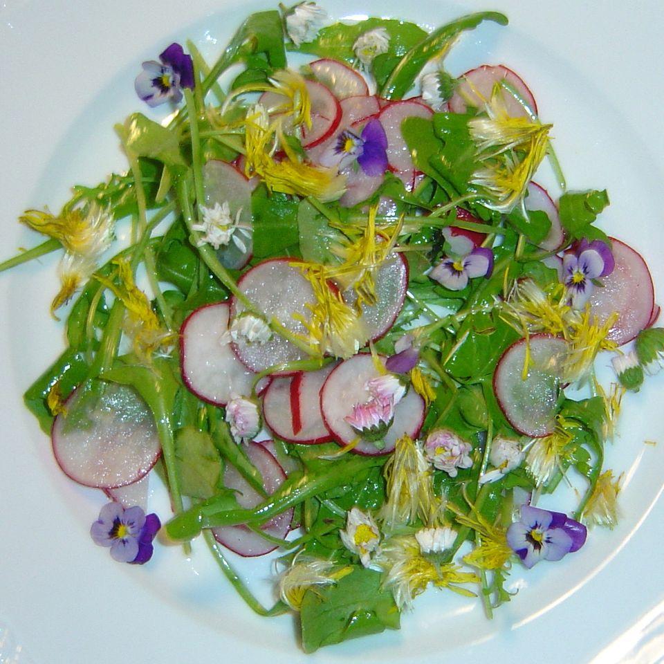 Rucola mit Radieschen, Löwenzahn, Gänseblümchen, Veilchen und pochiertem Ei