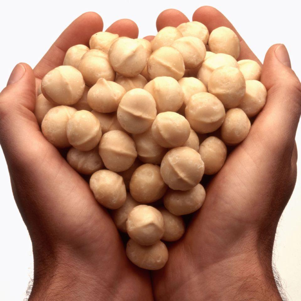 Feiner Geschmack und schön knackig: Macadamianüsse sind ein beliebter Snack.