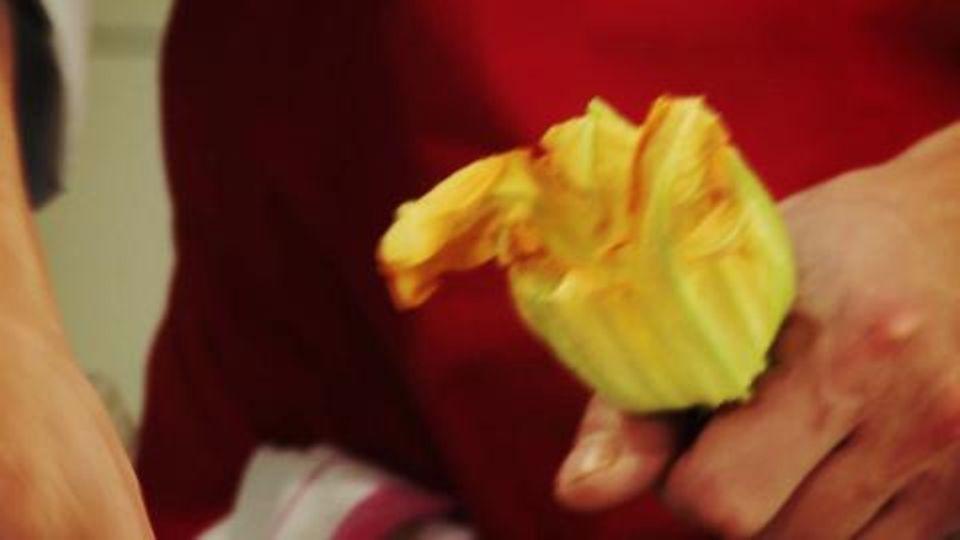 Gefüllte Zucchiniblüten