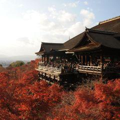 Tempelstadt Kyoto