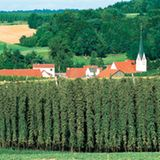 Hopfenland Bayern