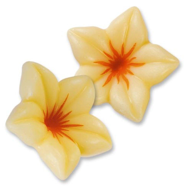 Filigrane Schoko-Blüten