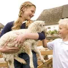 Lammtage Nordfriesland