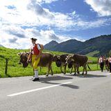 Appenzell - Am Fuß der Alpen