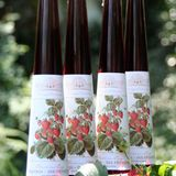 Weinessiggut Doktorenhof: Erdbeerbalsam