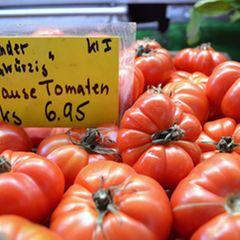 Krause Tomaten