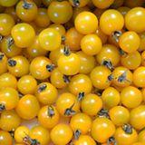 Gelbe Cherrytomaten