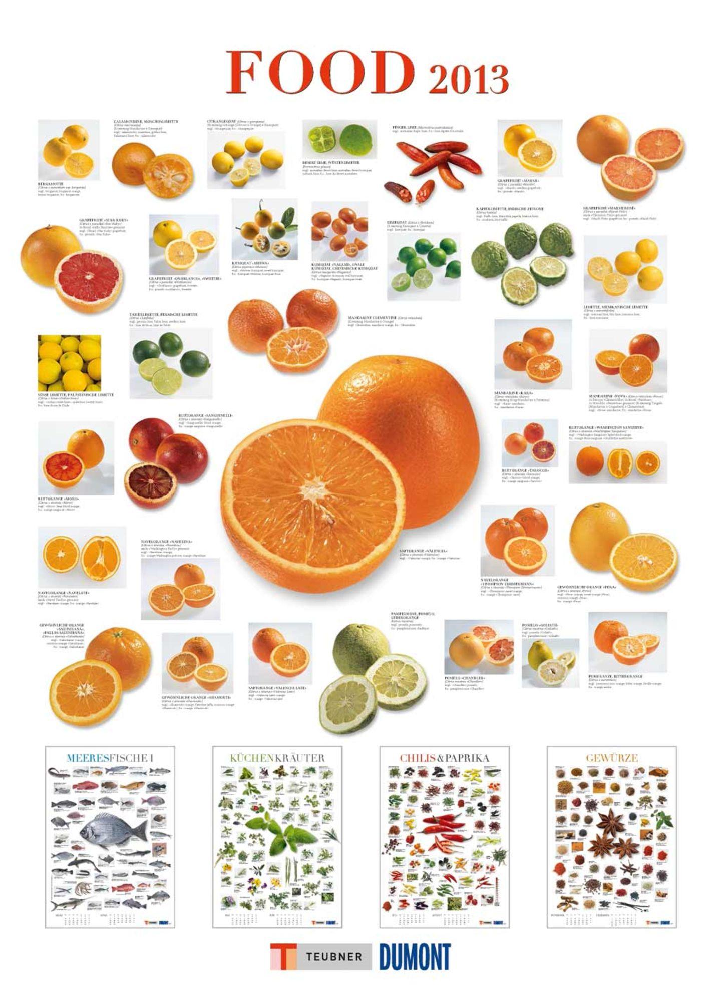 Food-Kalender in Posterformat