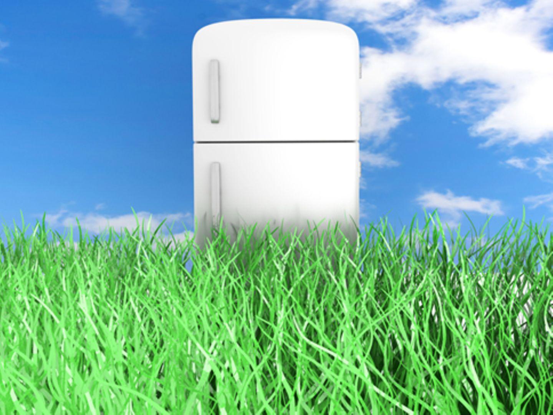 Nachhaltige Produktempfehlungen