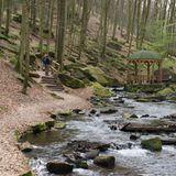 Pfalz: Waldpfad im Karlstal