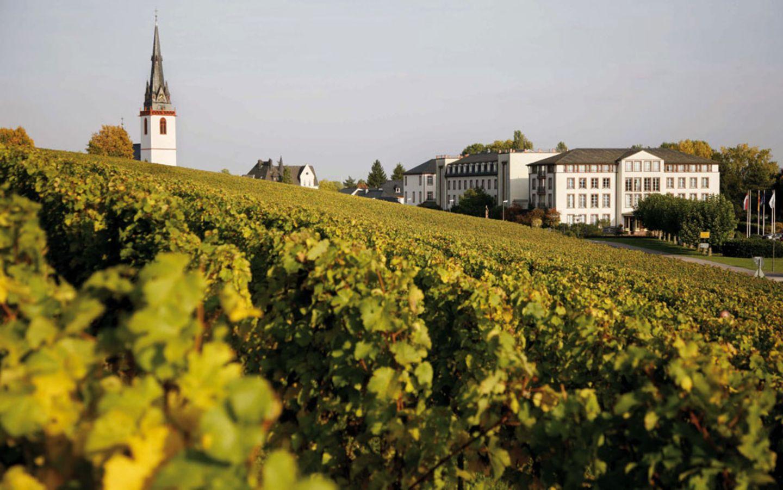 Rheingau: Schloss Reinhartshausen