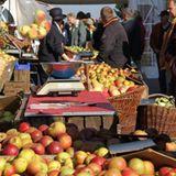 York: Apfel- und Kürbisfest