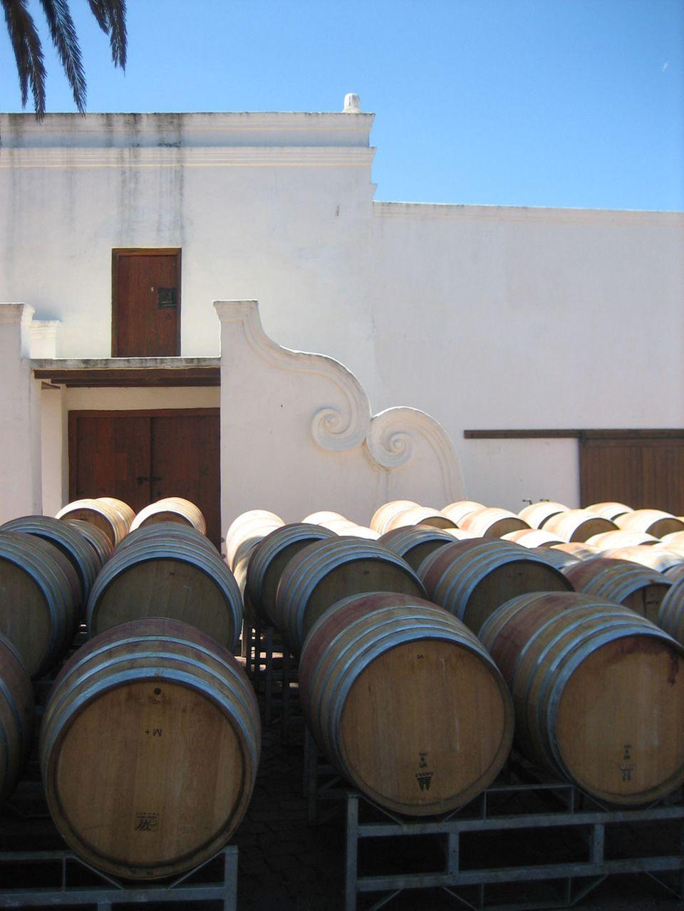 In Holzfässern ruht der köstliche Wein südafrikanischer Weingüter.