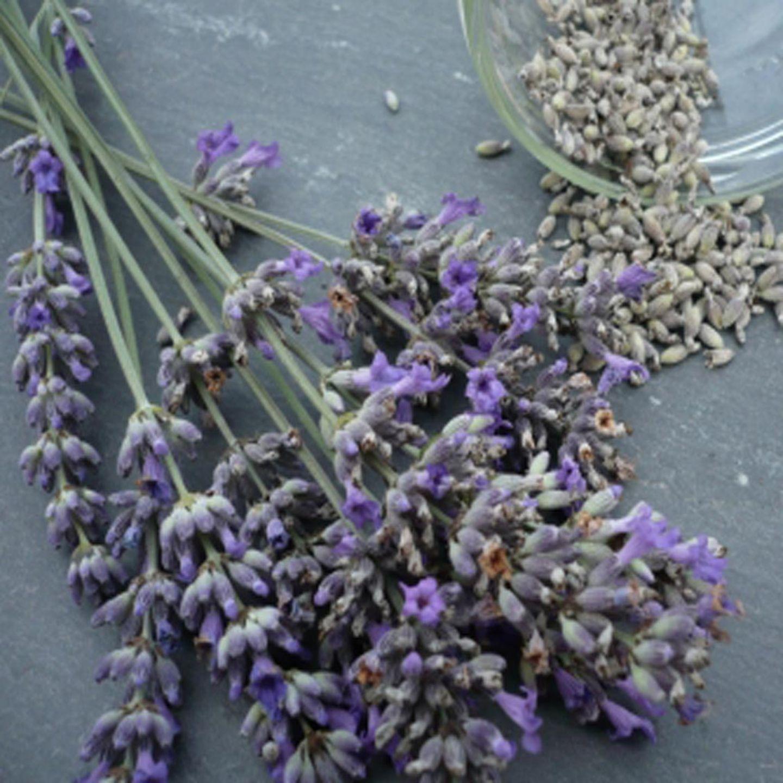 Getrockneter Lavendel