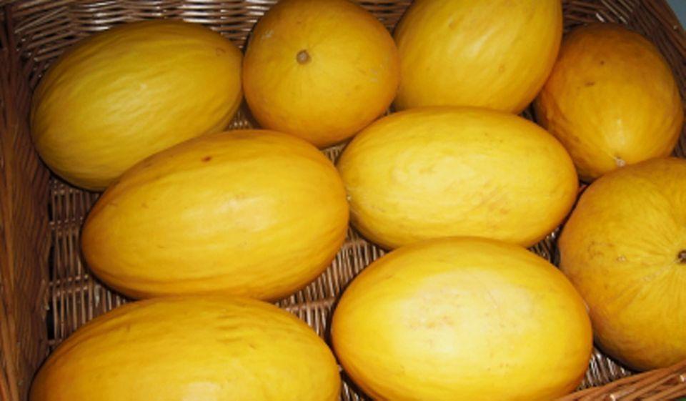 Honigmelone auf dem Markt