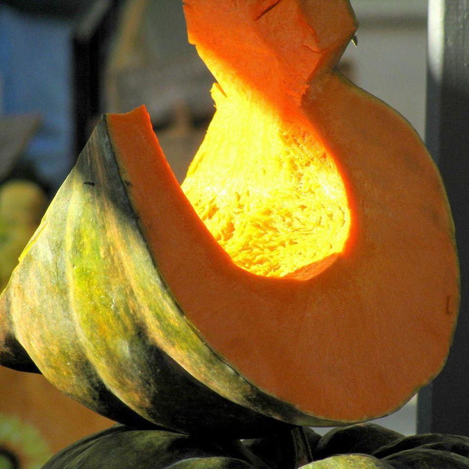 Der Moschuskürbis hat besonders viel aromatisches Fruchtfleisch