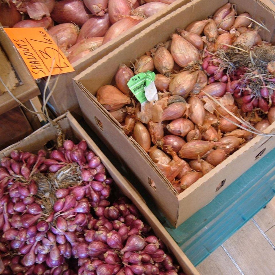 Frsiche Schalotten auf dem Markt