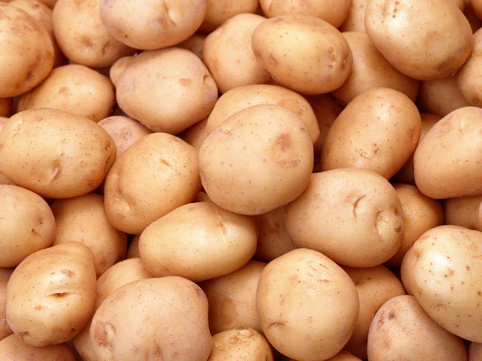 Entschlüsselt: Das Kartoffelgenom