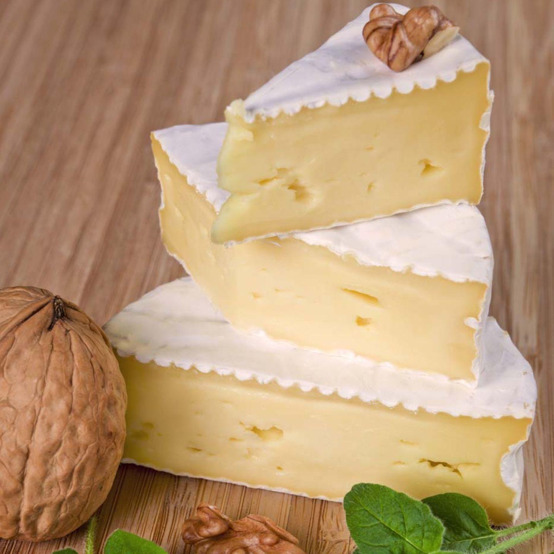 Camembert mit Weißschimmel.