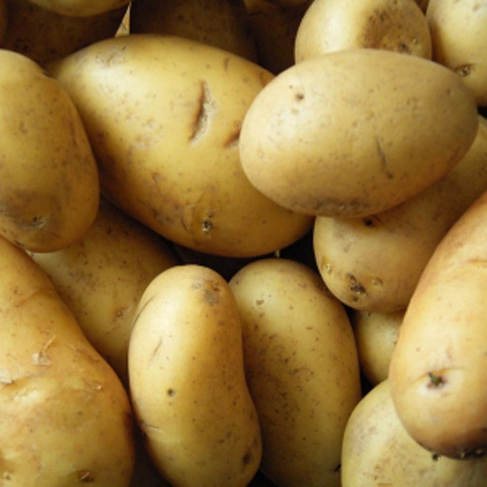 Grundlage: Kartoffeln