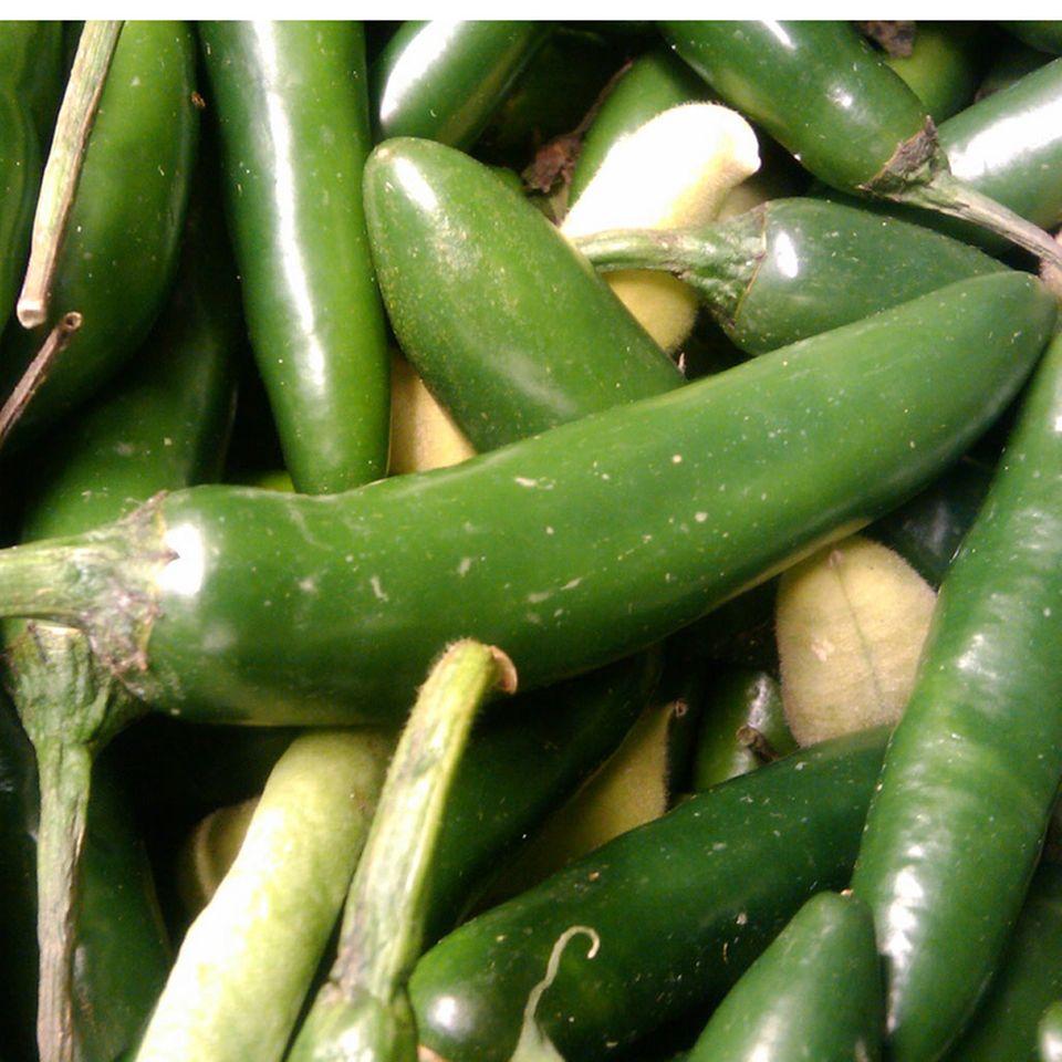 Grüner Tabasco wird aus Jalapeños hergestellt