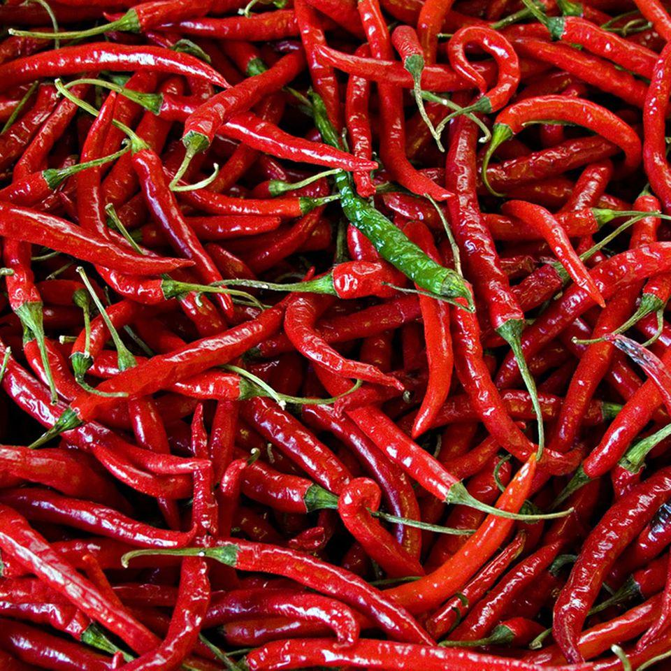 Grundlage für Sambal Oelek sind rote Chili-Schoten