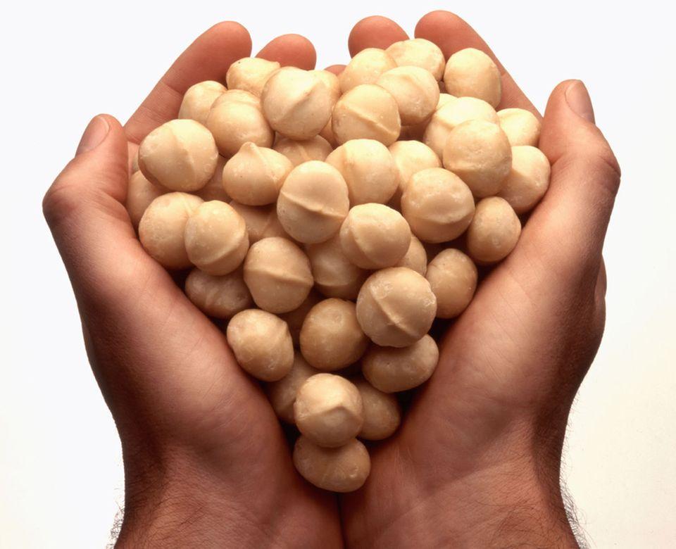 Macadamia-Nüsse sind die Samen des Macadamia-Baumes