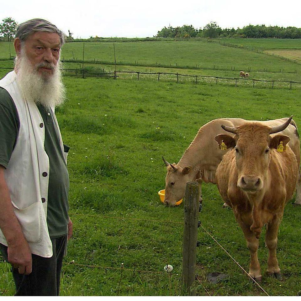 Glück durch Rinderzucht?