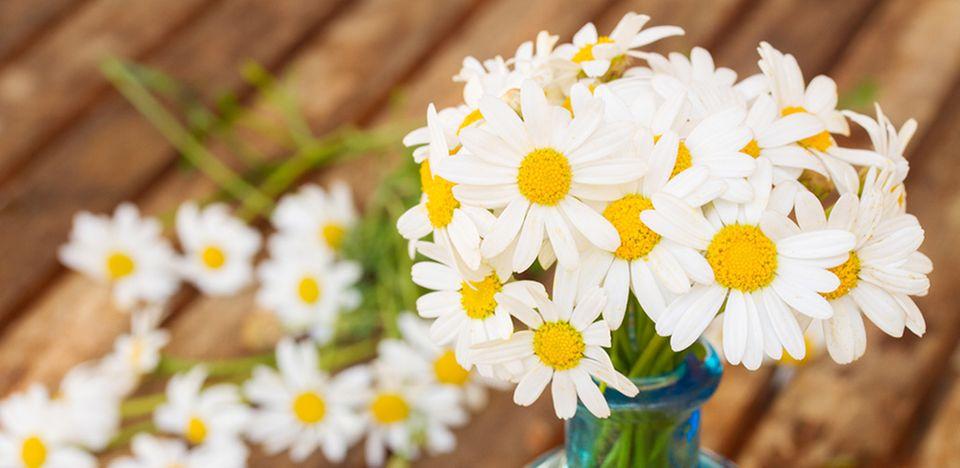 Blumen gehören zu den beliebtesten Muttertagsaufmerksamkeiten