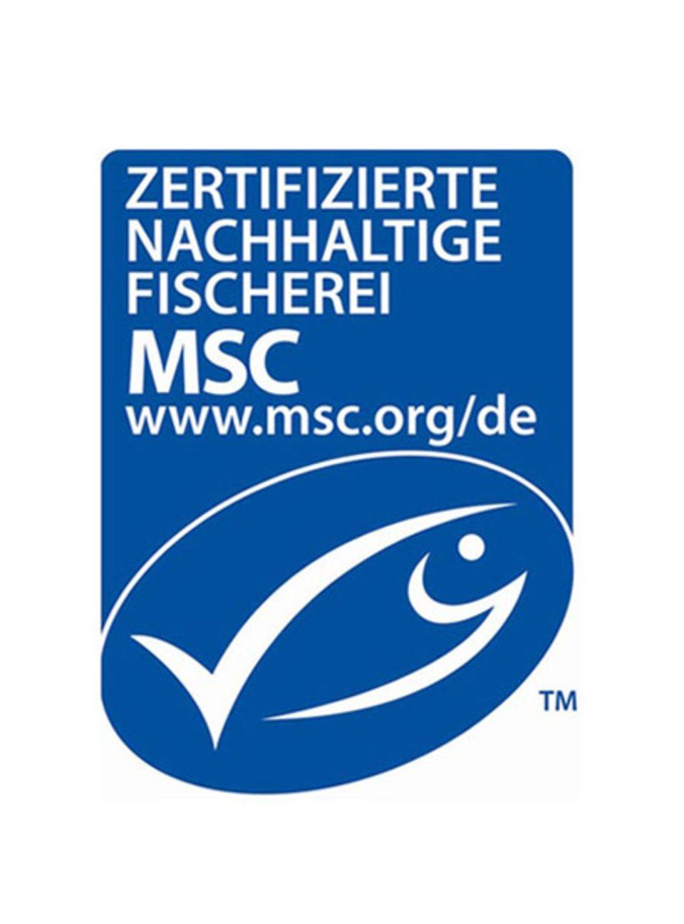 Das MSC-Siegel für nachhaltigen Fischfang
