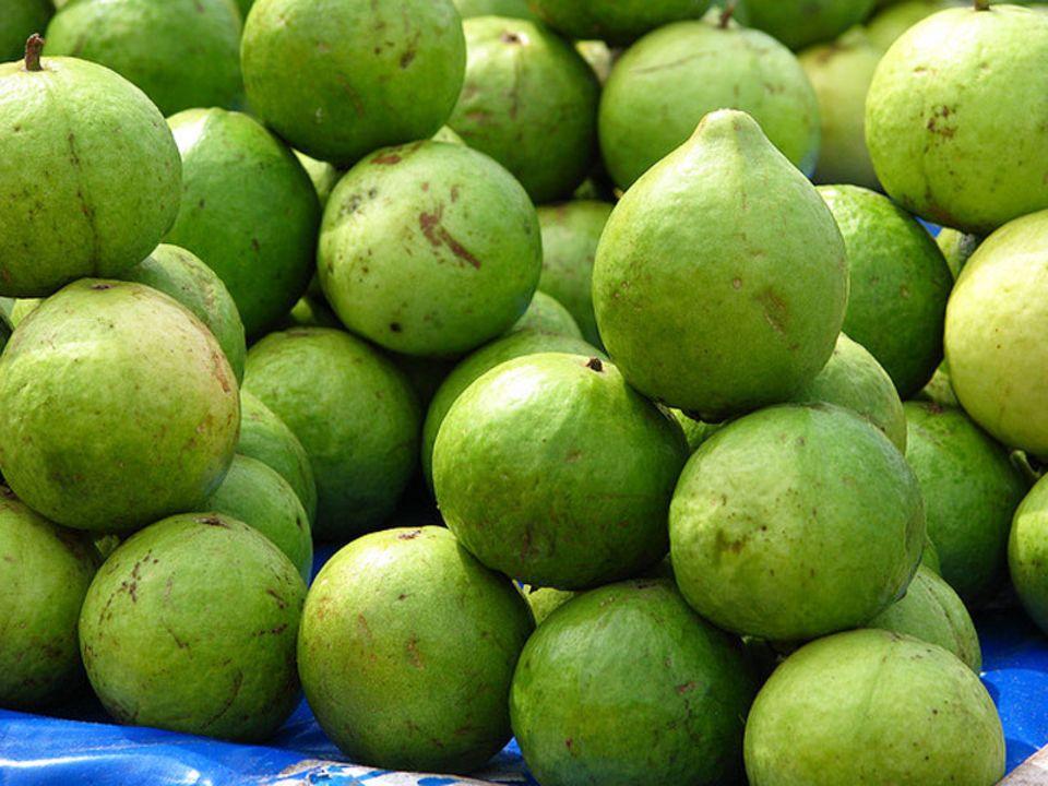 Guaven mit grüner Schale