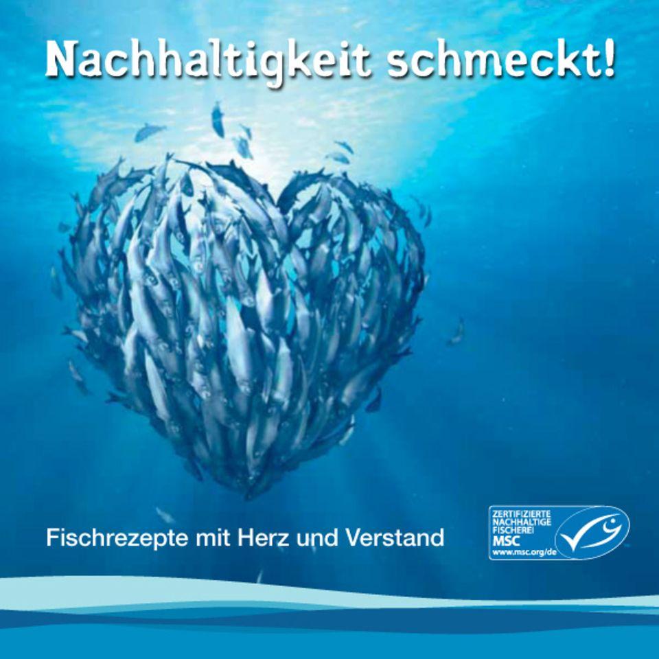 """Die neue Rezeptbroschüre von MSC: """"Nachhaltigkeit schmeckt!"""""""