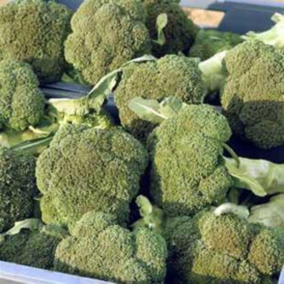 Brokkoli ist der Radikalfänger unter den Gemüsesorten