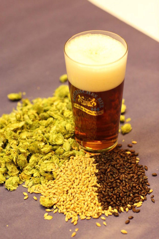 Rohstoffe für's Bier: Hopfen, Gerste und Malz
