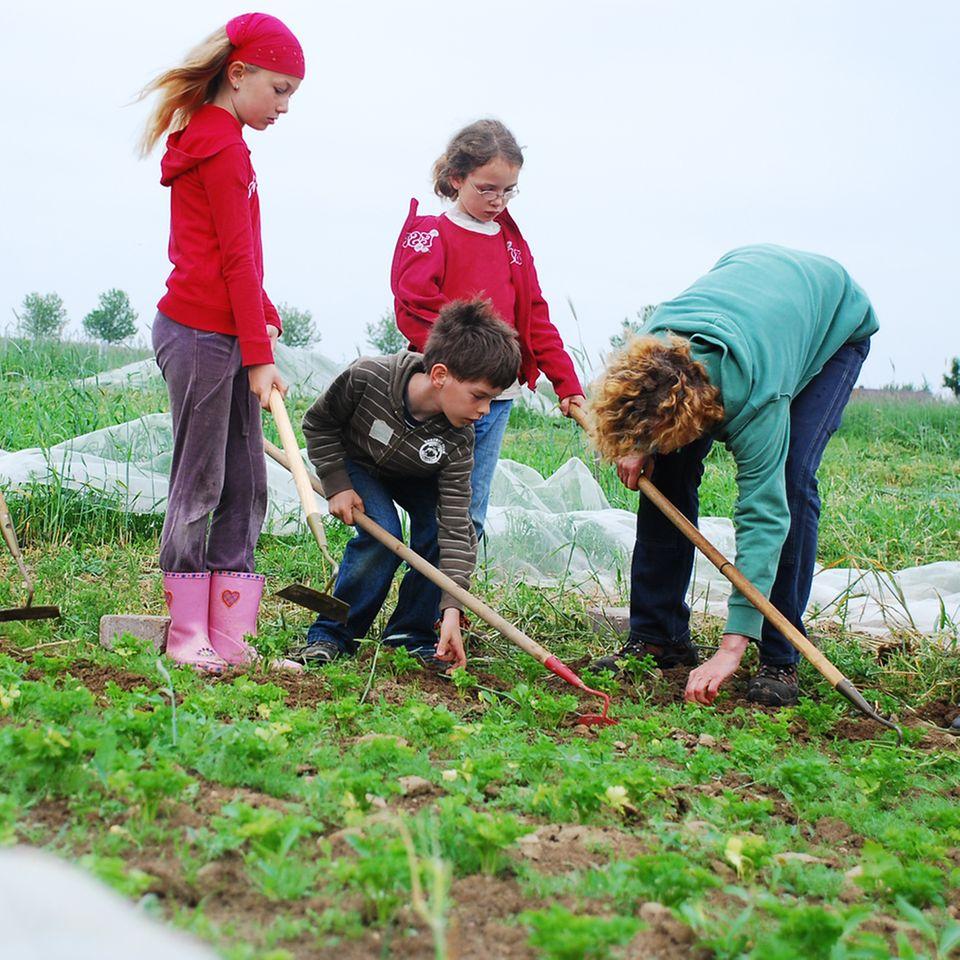 Kinder im Garten des Schulbauernhofs