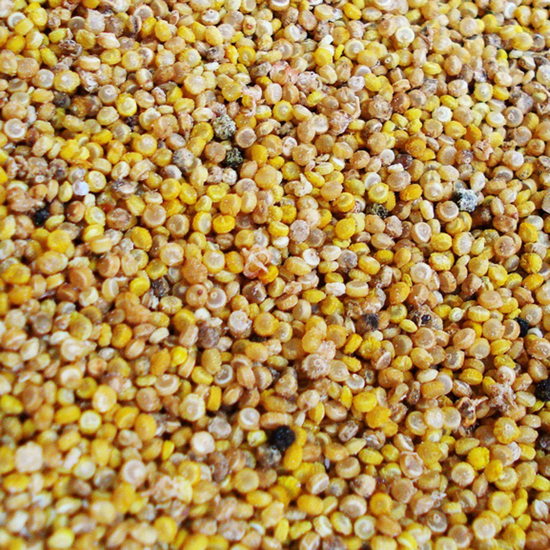 Quinoa: Rezepte und Wissenswertes