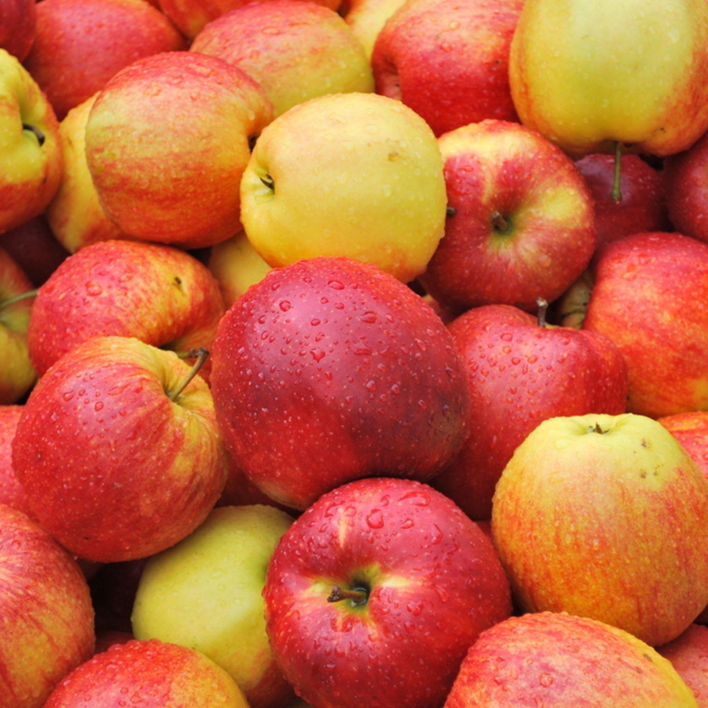 Kleines Apfel-ABC: 10 Apfelsorten