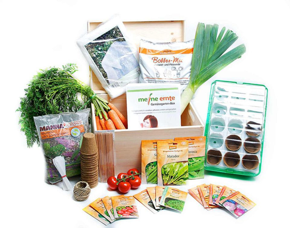 Die Gemüsegarten-Box von meine ernte