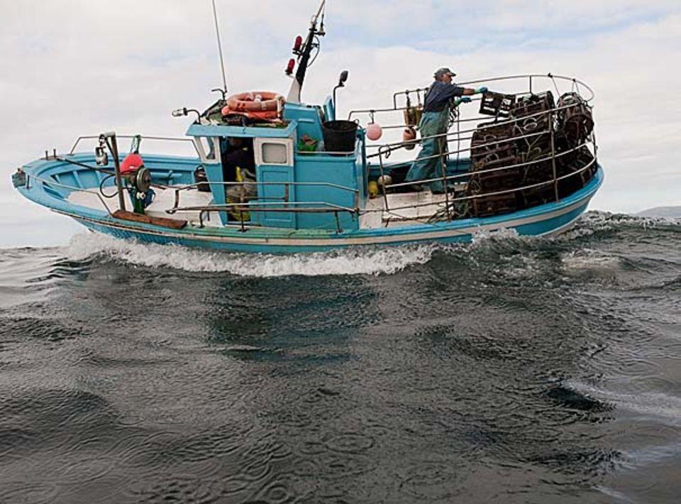 Fischabhängkeitstag: Der letzte Fisch