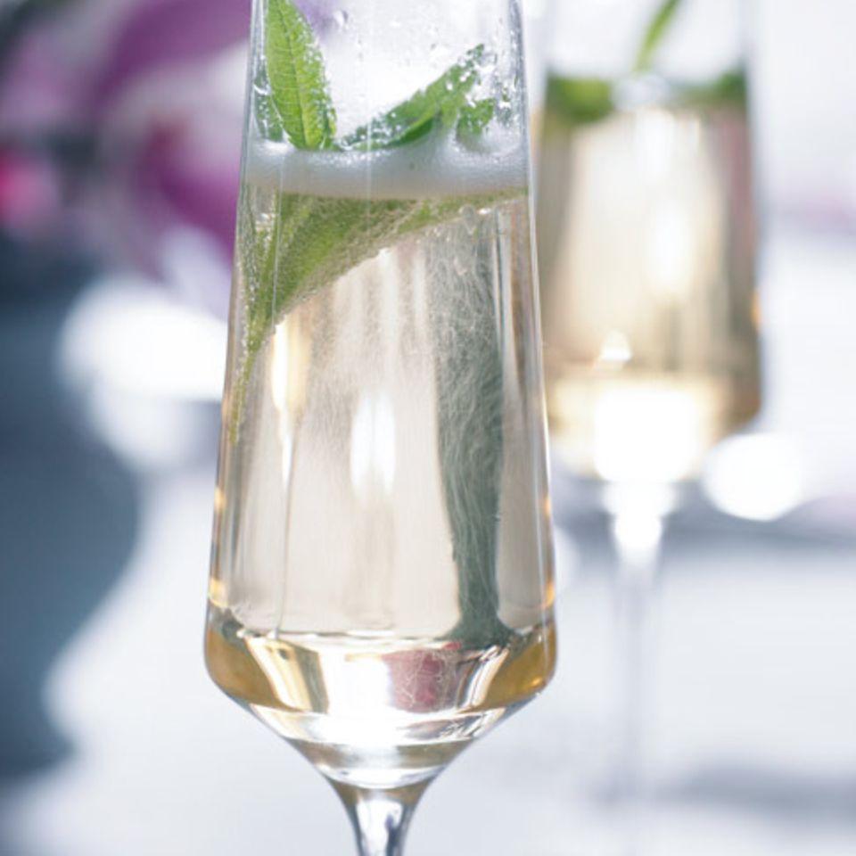 Rezepte: Sekt-Cocktails
