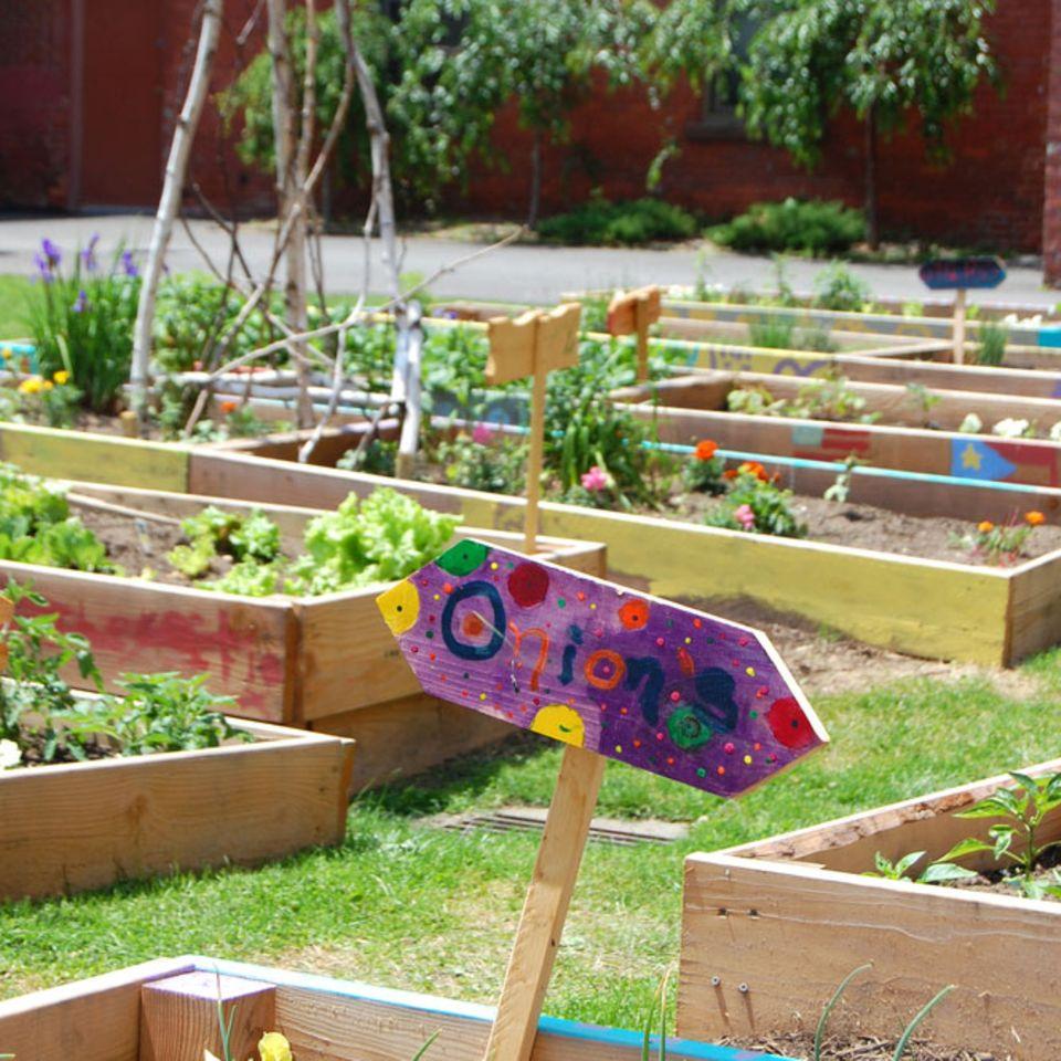 Was nicht passt, wird passend gemacht: Gemüsebeete in Holzkisten