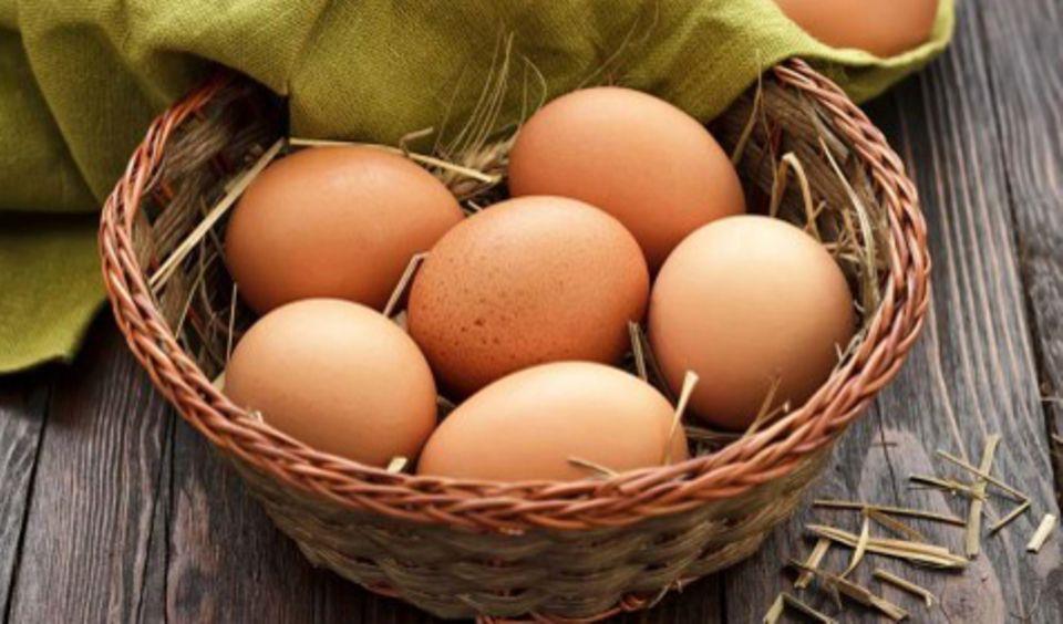 Nicht nur im Osterkörbchen heiß begehrt: Ei